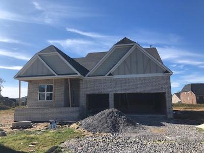 Nolensville Single Family Home For Sale: 3182 Bradfield Lot 212