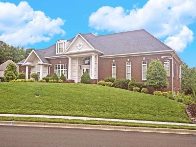 Clarksville Single Family Home For Sale: 832 Glastonbury Ct