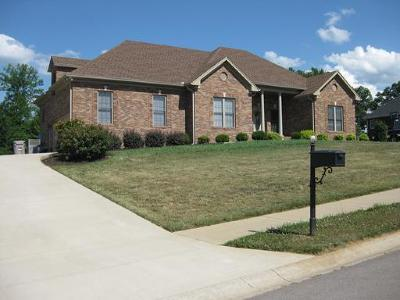 Pleasant View Single Family Home For Sale: 852 Dixie Ln