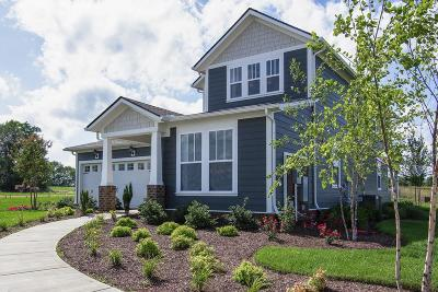 Spring Hill Single Family Home For Sale: 201 Sable Lane