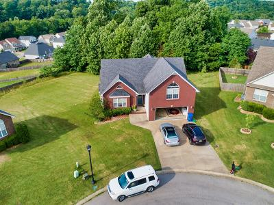Clarksville Single Family Home For Sale: 1132 Channelview Court