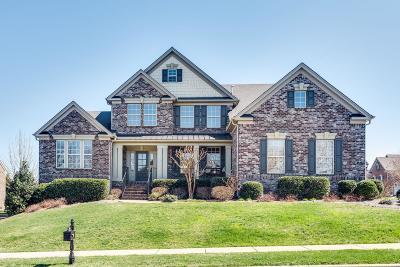 Franklin Single Family Home For Sale: 217 Terri Park Way