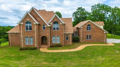 Pulaski Single Family Home For Sale: 5668 Campbellsville Rd