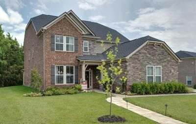 Nolensville Single Family Home For Sale: 1101 Crossfield Dr