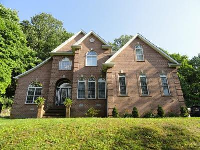 Pelham Single Family Home Active Under Contract: 168 Layne Mtn Road