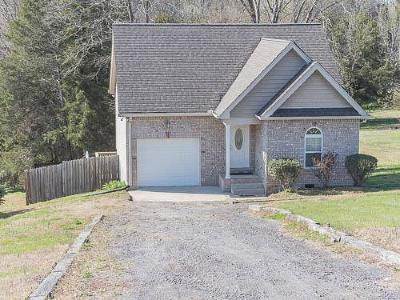 Mount Juliet Single Family Home For Sale: 4635 Benders Ferry Rd