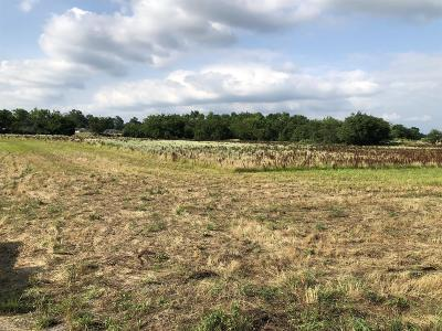 Residential Lots & Land For Sale: Rock Springs Midland Rd