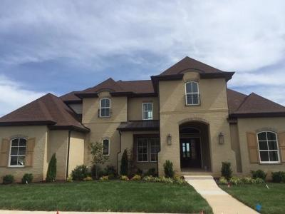 Franklin Single Family Home For Sale: 6313 Turkey Foot Court #123