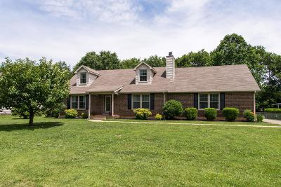 Smyrna Single Family Home For Sale: 406 Stonetree Dr