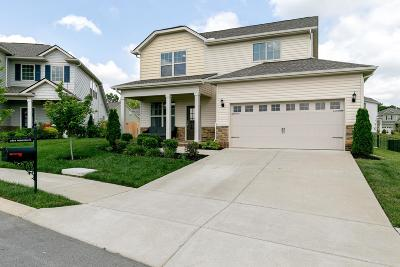 Spring Hill Single Family Home For Sale: 2004 Princess Ct