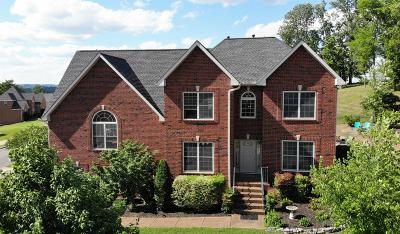 Hendersonville Single Family Home For Sale: 129 Cedar Ridge Ln
