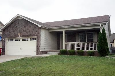 Clarksville Single Family Home For Sale: 967 Silty Dr