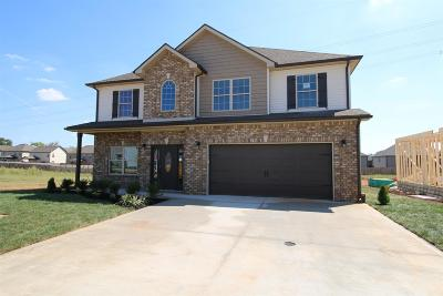 Clarksville Single Family Home For Sale: 450 Summerfield