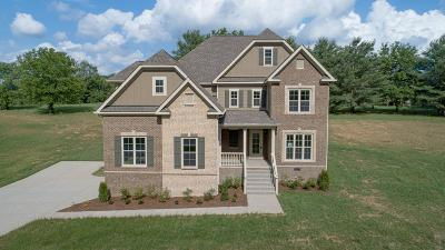 Spring Hill Single Family Home For Sale: 4014 Foxfield Dr - Lot 14