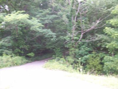 Residential Lots & Land For Sale: Rowe Gap Rd