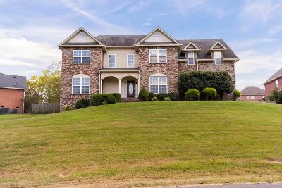 Mount Juliet Single Family Home For Sale: 1030 Noel Dr