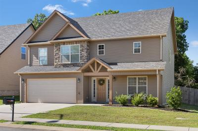 Clarksville Single Family Home For Sale: 1255 Eagles View Dr