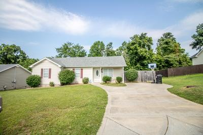 Clarksville Single Family Home For Sale: 1030 Granny White Rd