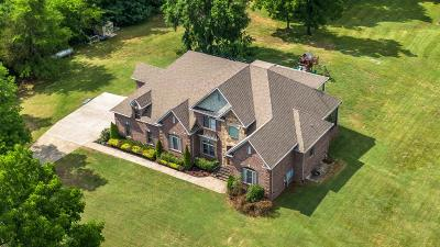 Sumner County Single Family Home For Sale: 1728 Long Hollow Pike