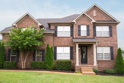 Hendersonville Single Family Home For Sale: 100 Bedford St