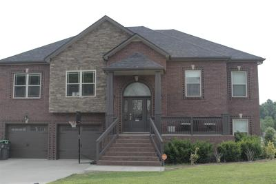 Clarksville Single Family Home For Sale: 955 Smoots Dr