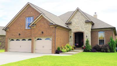 Spring Hill Single Family Home For Sale: 6004 Lily Dr