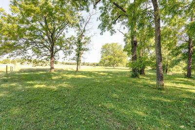 Residential Lots & Land For Sale: 2 Carters Creek Pike