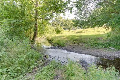 Residential Lots & Land For Sale: 3 Carters Creek Pike