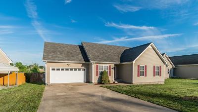 Clarksville Single Family Home For Sale: 3868 Mackenzie Dr
