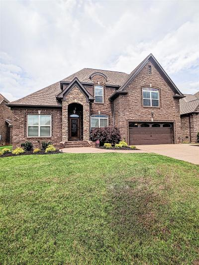 Mount Juliet Single Family Home For Sale: 2009 Stonebrook Cir