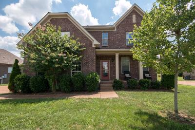 Hendersonville Single Family Home For Sale: 138 Captains Cir