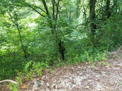 Residential Lots & Land For Sale: 61 Maury Ln