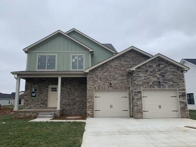 Clarksville Single Family Home For Sale: 525 Dexter Drive Lot 93