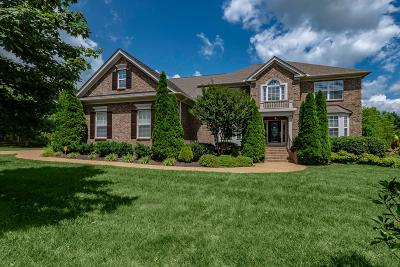 Nashville Single Family Home For Sale: 55 Timberline Dr