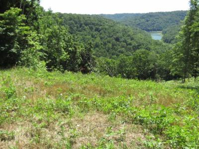 Residential Lots & Land For Sale: 2 .31ac S Hunting Landing