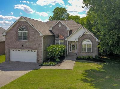 Hendersonville Single Family Home For Sale: 102 Strathmore Way