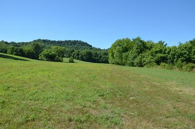 Residential Lots & Land For Sale: 1 Alexandria To Dismal Rd