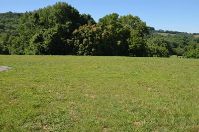 Residential Lots & Land For Sale: 6 Alexandria To Dismal Rd