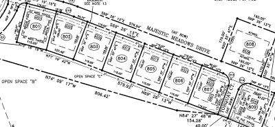 Residential Lots & Land For Sale: 4501 Majestic Meadows Dr