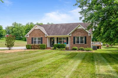 Spring Hill  Single Family Home For Sale: 3156 Greens Mill Rd