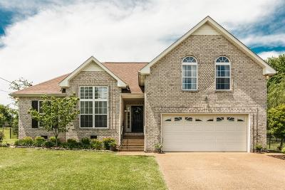 Hendersonville Single Family Home For Sale: 152 Waterford Way