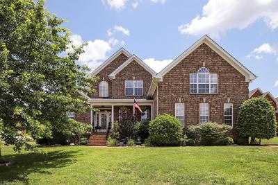 Hendersonville Single Family Home For Sale: 107 S Shadowhaven Way