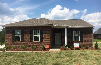 Murfreesboro Single Family Home For Sale: 2310 Sandstone Circle