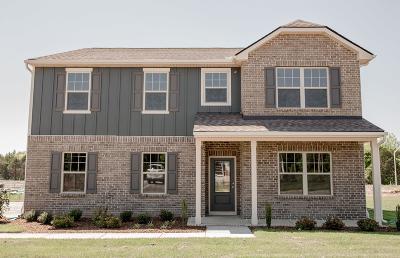 Murfreesboro Single Family Home For Sale: 2537 Sandstone Circle