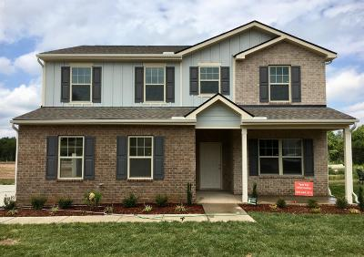 Murfreesboro Single Family Home For Sale: 2529 Sandstone Circle