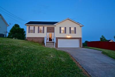 Clarksville Single Family Home For Sale: 303 Congressman Dr