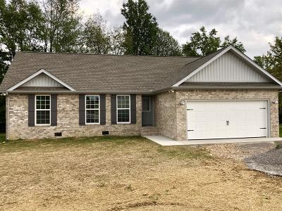 Smithville Single Family Home For Sale: 668 Kendra Dr