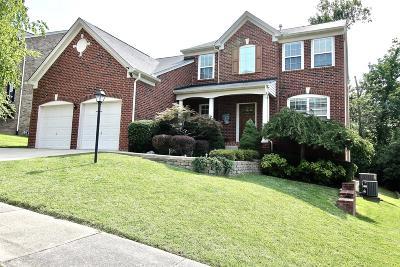 Nashville Single Family Home For Sale: 3080 Brookview Forest Dr