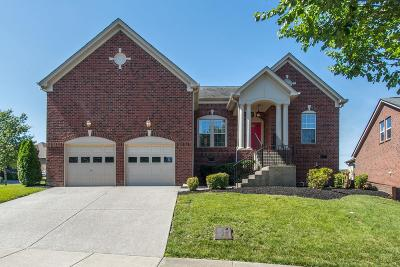 Nolensville Single Family Home For Sale: 8956 Macauley Ln