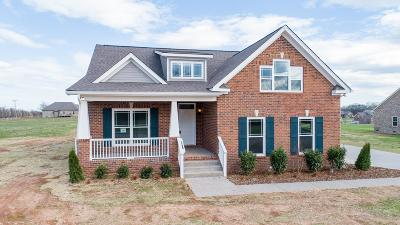 Spring Hill Single Family Home For Sale: 6047 Spade Dr Lot 211